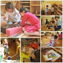 scoala de vara montessori