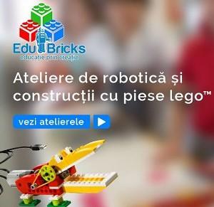 Ateliere de robotica si constructii EduBricks