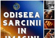 odiseea-sarcinii-in-imagini-colaj-text