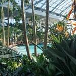 palmieri-therme bucuresti