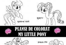 planse de colorat micii ponei
