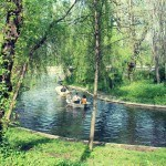 Parcul Carol lac de agrement barci