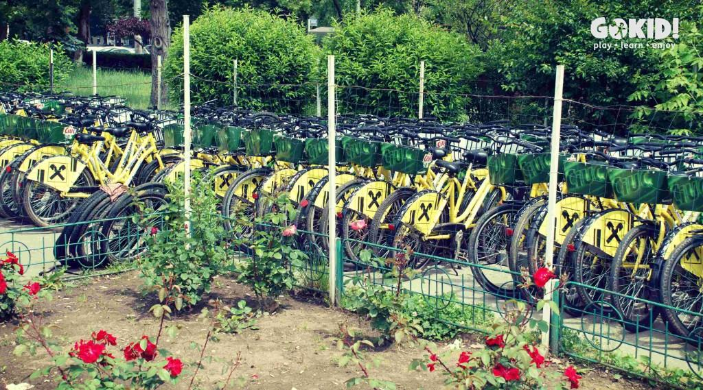 Parcul Tineretului biciclete i'Velo