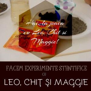 Atelier experimente stiintifice