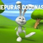 Iepuras Coconas. Cantec pentru copii mici