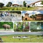 Excursii Cool În Familie la mai puţin de 100 km de Bucureşti