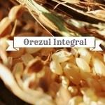 Beneficiile consumului de orez integral
