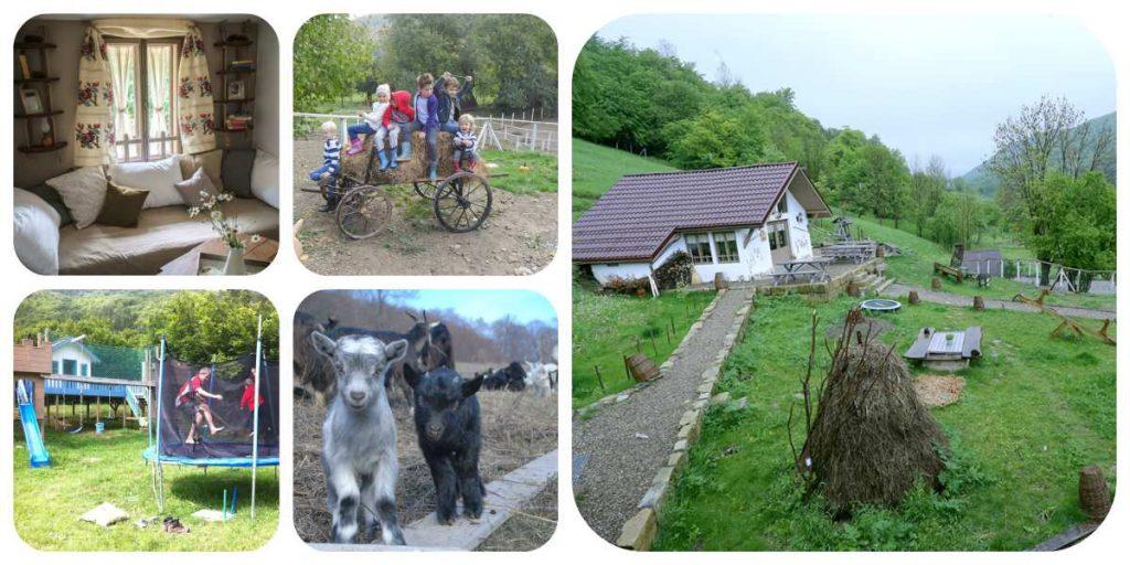 Excursii de Weekend În Familie la Sub 200 km de Bucureşti Ferma de sub Penteleu