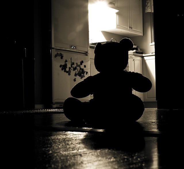 Copilului Tău îi e Frică de Întuneric ursulet