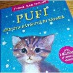 Pufi, pisicuța rătăcită în zăpadă