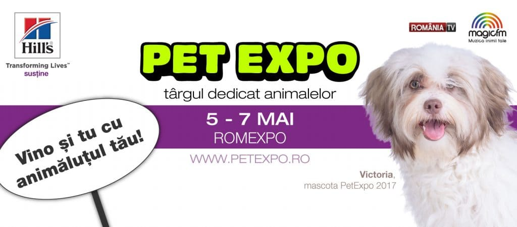 Pet Expo 2017 festivaluri
