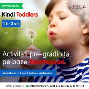 Activități pre-grădiniță, pe baze Montessori Kindi Toddlers