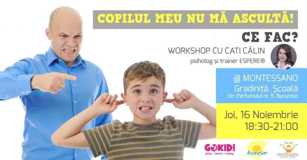 Copilul Meu NU Ma Asculta, Ce fac? Workshop pentru părinţi cu Cati Călin la Gradinita Montessano