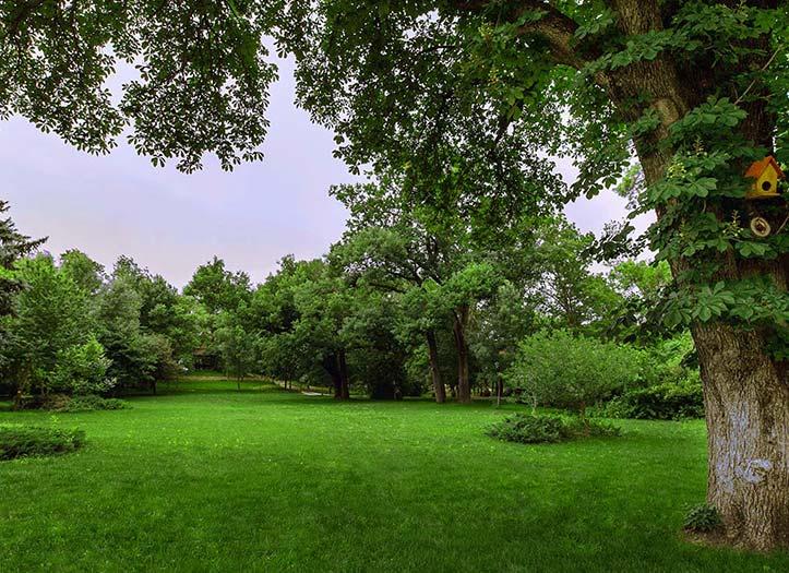 Excursii de Relaxare în Familie Domeniul Manasia parc