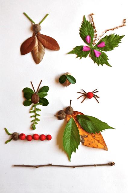 activitate cu frunze insecte din frunze