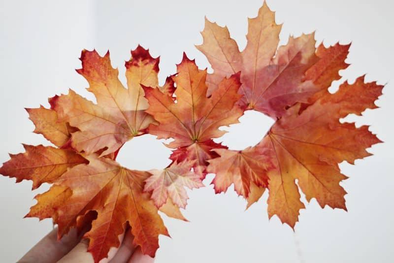 activitate cu frunze mască din frunze