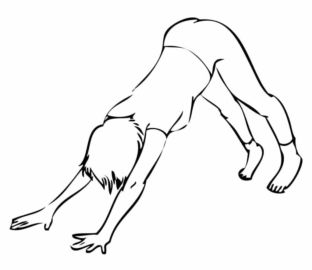 downward facing dog Posturi de Yoga Pentru Energie câinele