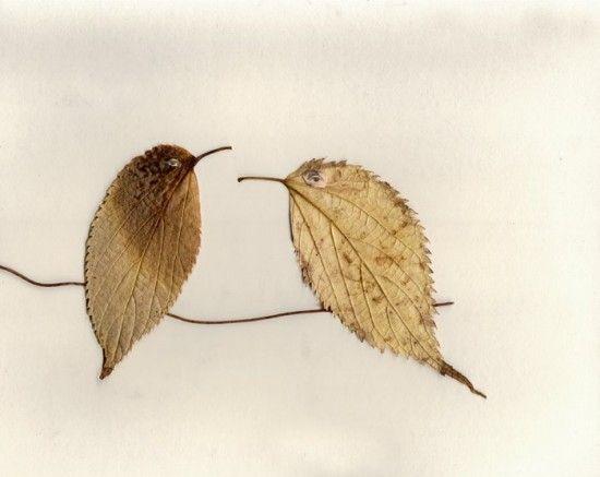 activitate cu frunze pasare din frunze