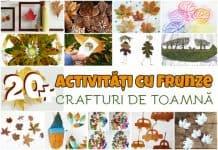 activitate cu frunze crafturi de toamnă