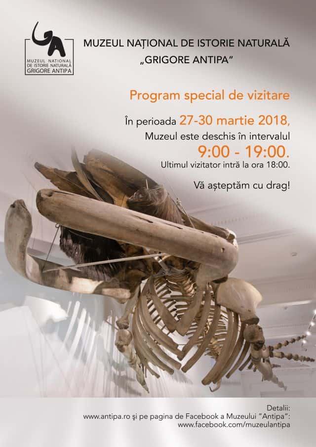 Muzeul National de Istorie Naturala Grigore Antipa scoala altfel