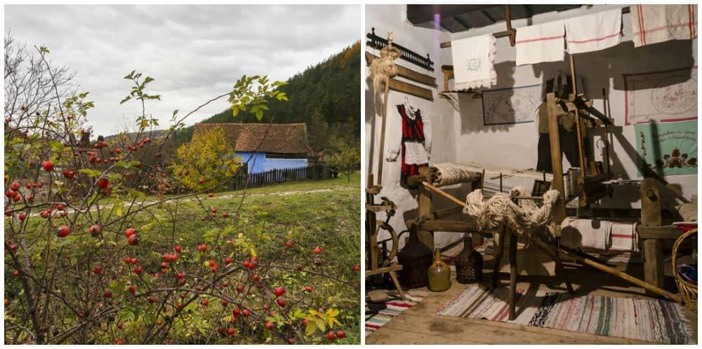 Excursii de weekend Bucuresti Valea Zalanului colaj