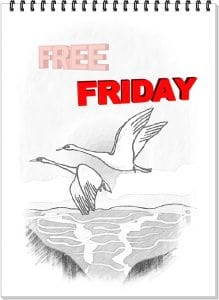 FREE FRIDAY SHOSHON KIDS