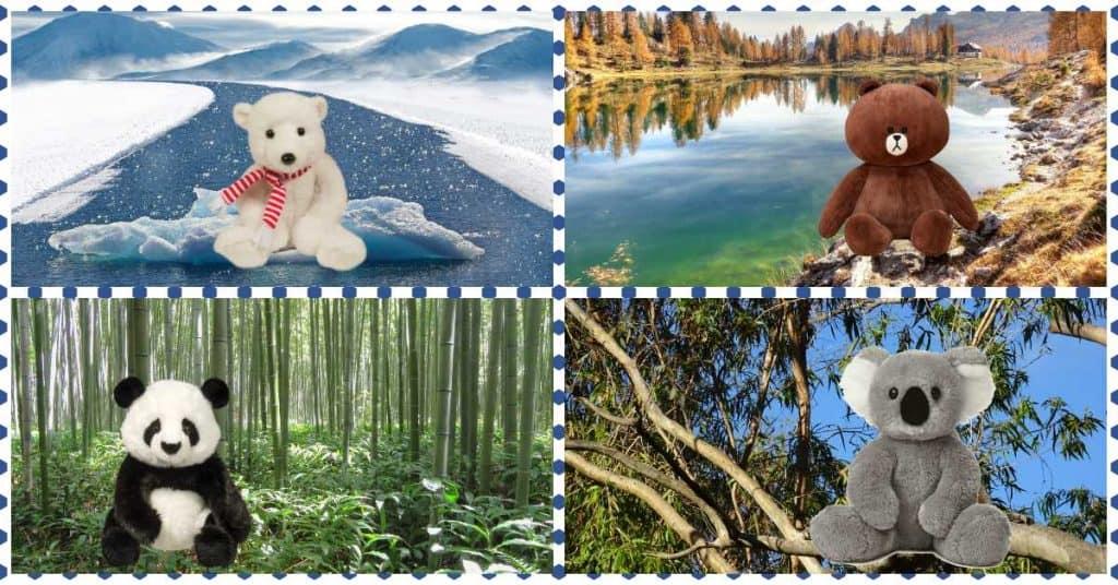 Prietenia Ursuletilor. O poveste despre prietenie cu ursuleti si dorinte diferite fb
