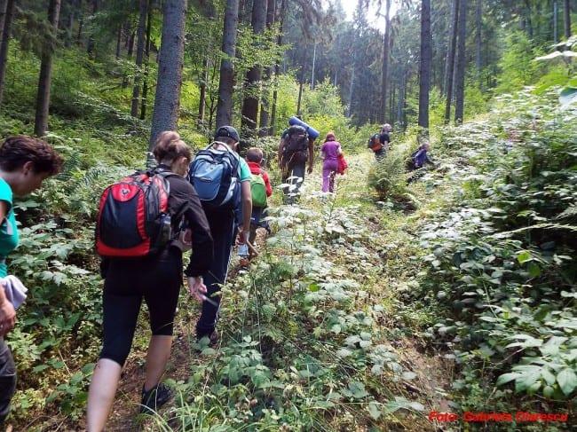 Tabără de Vară pentru Adolescenți 13 – 18 ani Bucovina padure drumetie