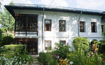 muzee kid-friendly Muzeul Theodor Pallady gokid