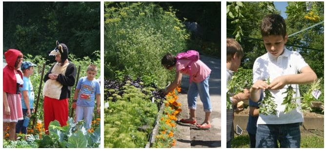 muzee kid-friendly gradina botanica