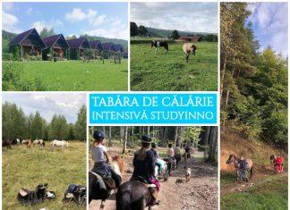 Tabara de Calarie Studyinno GOKID - 2019 gokid