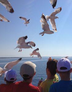 Tabara Internationala de Vara pe Insula Thassos, Grecia copii pescarusi